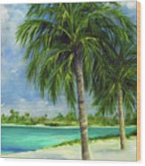 Tropical Beach Two Wood Print