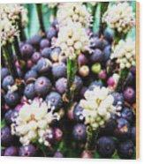 Tropical Berries 3 Wood Print