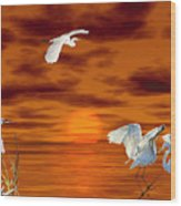 Tropical Birds And Sunset Wood Print