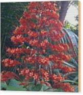 Tropical Christmas Wood Print