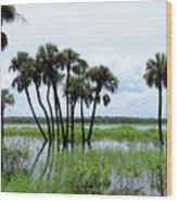 Tropical Flooding Wood Print