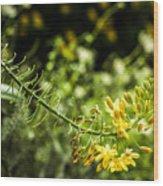 Tropical Flowers 7 Wood Print