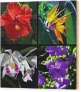 Tropical Flowers Multiples Wood Print