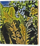 Tropical Foliage A-la Monet Wood Print
