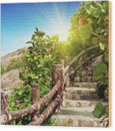Tropical Garden Wood Print by MotHaiBaPhoto Prints