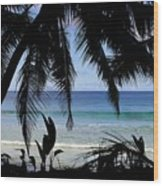 Tropical Hole Wood Print