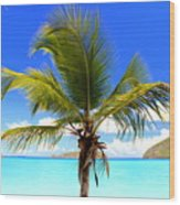 Tropical Island Wood Print