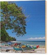 Tropical Island Panorama Paradise Wood Print