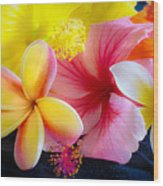 Tropical Melange Wood Print