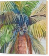 Tropical Palm Inn Wood Print