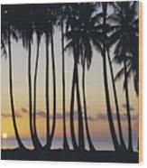 Tropical Palm Sunset Wood Print