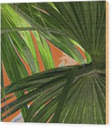 Tropical Palms 2 Wood Print