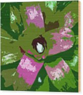 Tropical Plant Work Number 5 Wood Print