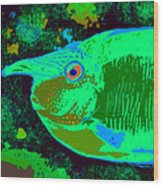 Tropical Reef Fun Wood Print