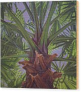 Tropical Shadows Wood Print