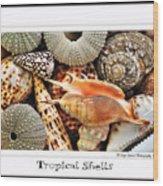 Tropical Shells... Greeting Card Wood Print by Kaye Menner