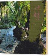 Tropical Spring Wood Print