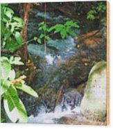 Tropical Stream Wood Print