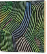 Tropical Striations Wood Print