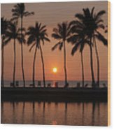 Tropical Sunset Silhouettes  Wood Print