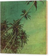 Tropical Vestige Wood Print by Andrew Paranavitana