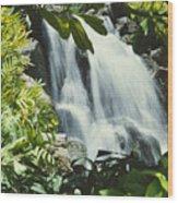 Tropical Waterfall Wood Print