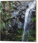 Tropical Waterfall Wood Print