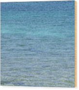 Tropical Waters Wood Print