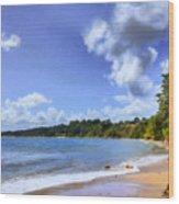 Tropical Waters Wood Print