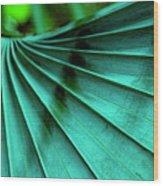 Tropical Wings Wood Print