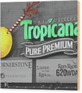 Tropicana Field Wood Print