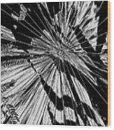 Tropix Noir Wood Print