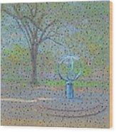 Troup Square  Wood Print