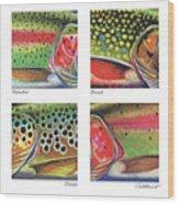 Trout Colors Wood Print