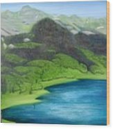 Trout Lake North Wood Print