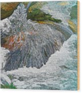 Trout Stream Wood Print