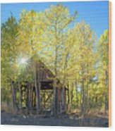 Truckee Shack Near Sunset During Early Autumn With Yellow And Green Leaves On The Trees Wood Print