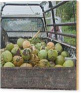 Truckload Of Coconuts Wood Print