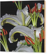 True Lilies Wood Print by Andy Za