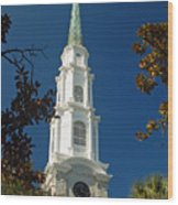 True North - Savannah Steeple Wood Print