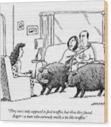 Truffle Hogs Wood Print