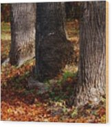 Trunk And Leaves Wood Print by Joyce Kimble Smith