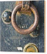 Trusted Gateway Wood Print