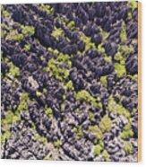 Tsingys, Karst Formations In The Tsingy Wood Print