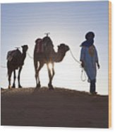 Tuareg Man With Camel Train, Sahara Desert, Morocc Wood Print by Peter Adams