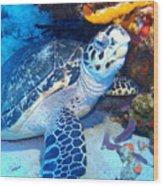 Tucked Away Turtle Wood Print
