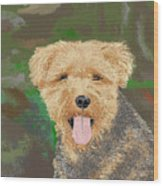 Tucker The Welsh Terror Wood Print