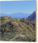 Tucson Mountain Ranges Wood Print