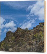 Tucson Mountains Wood Print