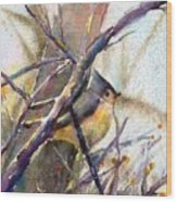 Tuffed Titmouse 2 Wood Print